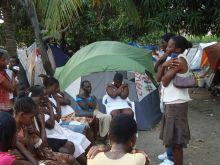 mariposa_Haiti